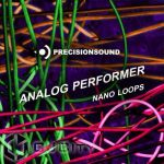 Precisionsound Nano Loops